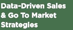 Data-Driven Sales & Go To Market Strategies